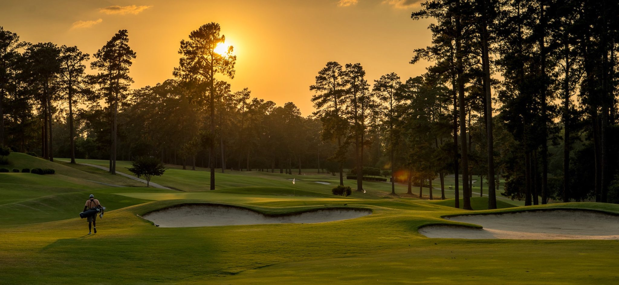 The Forest Hills Golf Course Voted Best Public Golf Course In Augusta Ga